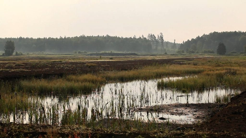 International Peatland Society holds symposium - Klasmann-Deilmann